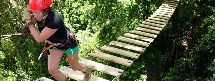 Tree canopy walk - Bocas del Toro