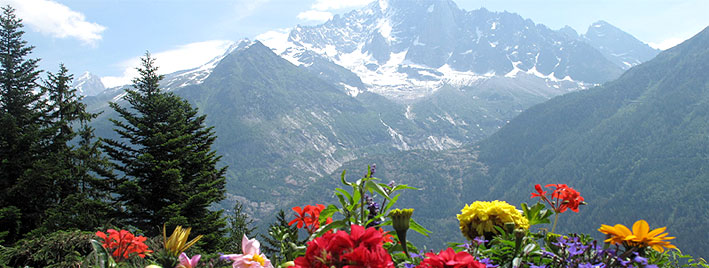 Chamonix summer scenery