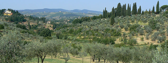 Italian countryside near Florence