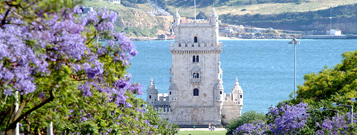 Belém Tower and flowers, Lisbon