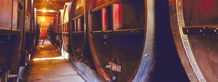 Spanish and wine in Mendoza