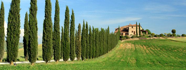 Tuscan countryside near San Giovanni