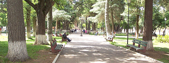 Sunny park in Sucre, Bolivia